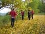 Goldsteig_10.10.2008